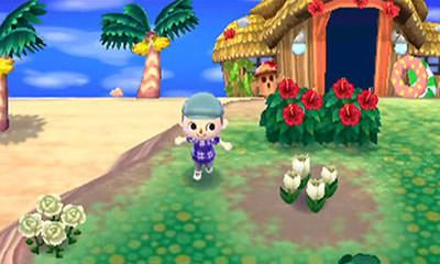 Animal Crossing New Leaf Free eShop Download Code 3