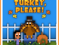 Turkey, Please! 3DS